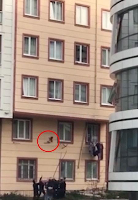 Clip nghẹt thở: Cứu sống em bé 2 tuổi rơi từ cửa sổ tầng 3 ảnh 2